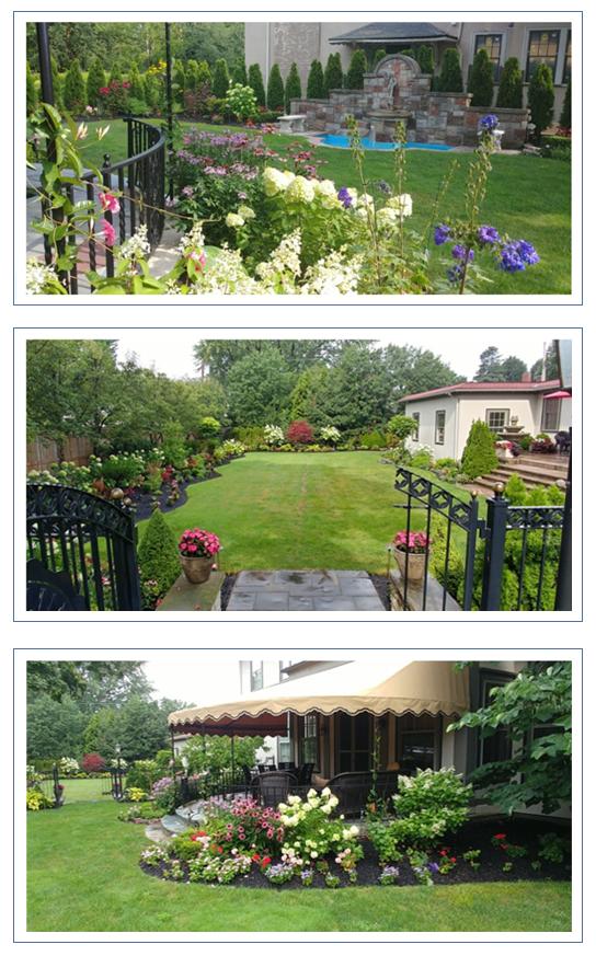 Groovy Garden Profile